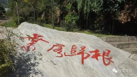 郑州等多地劲吹绿色殡葬风 节地生态葬环保又庄重